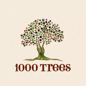 1000 Trees Housing
