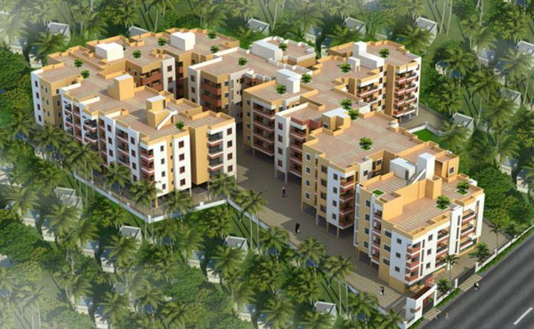 Jamals Caladium Aerial View