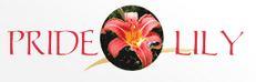 LOGO - Aditya Developers Pride Lily