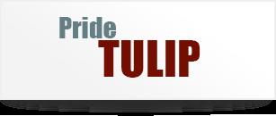 LOGO - Aditya Pride Tulip