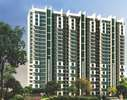 AIG Infratech India AIG Royal Greater Noida West