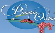 LOGO - Ashish Prajakta Orchid