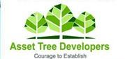 Asset Tree Developers
