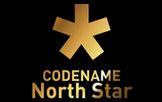 LOGO - CODENAME BCD North Star