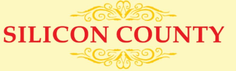 LOGO - Bhashyam Silicon County