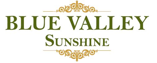 LOGO - Blue Valley Sunshine