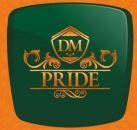 LOGO - BN Projects DM Pride