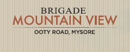 LOGO - Brigade Mountain View