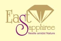 East Sapphiree Noida