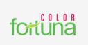LOGO - Colorhomes Fortuna