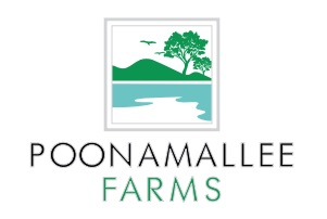 LOGO - Colorhomes Poonamallee Farms
