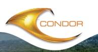 Condor Builders