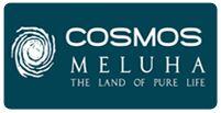 LOGO - Cosmos Meluha