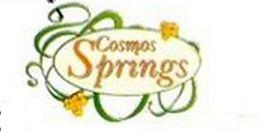 LOGO - Cosmos Springs Angel