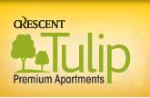LOGO - Crescent Tulip