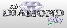 LOGO - DD Diamond Valley