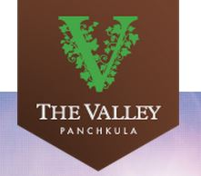 LOGO - DLF Valley