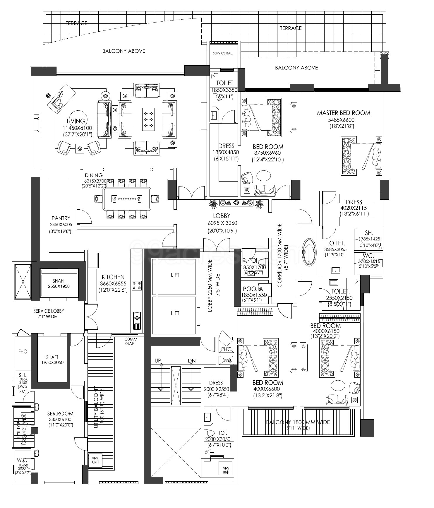 Builders DLF The Camellias Floor Plan
