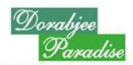 LOGO - Dorabjee Paradise