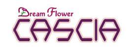 LOGO - Dream Flower Cascia