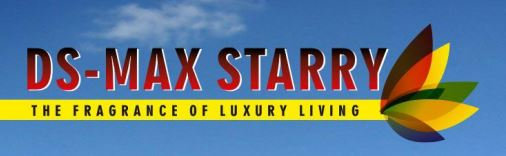 LOGO - DS Max Starry