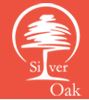LOGO - DS Max Silver Oak