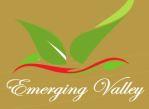 LOGO - Emerging valley