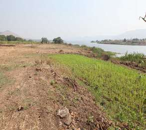 Residential Land in FDCC Celosia