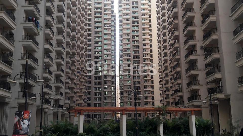 Gaur 12th Avenue Elevation