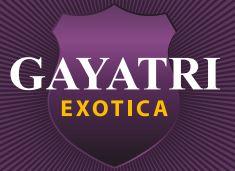 LOGO - Gayatri Exotica