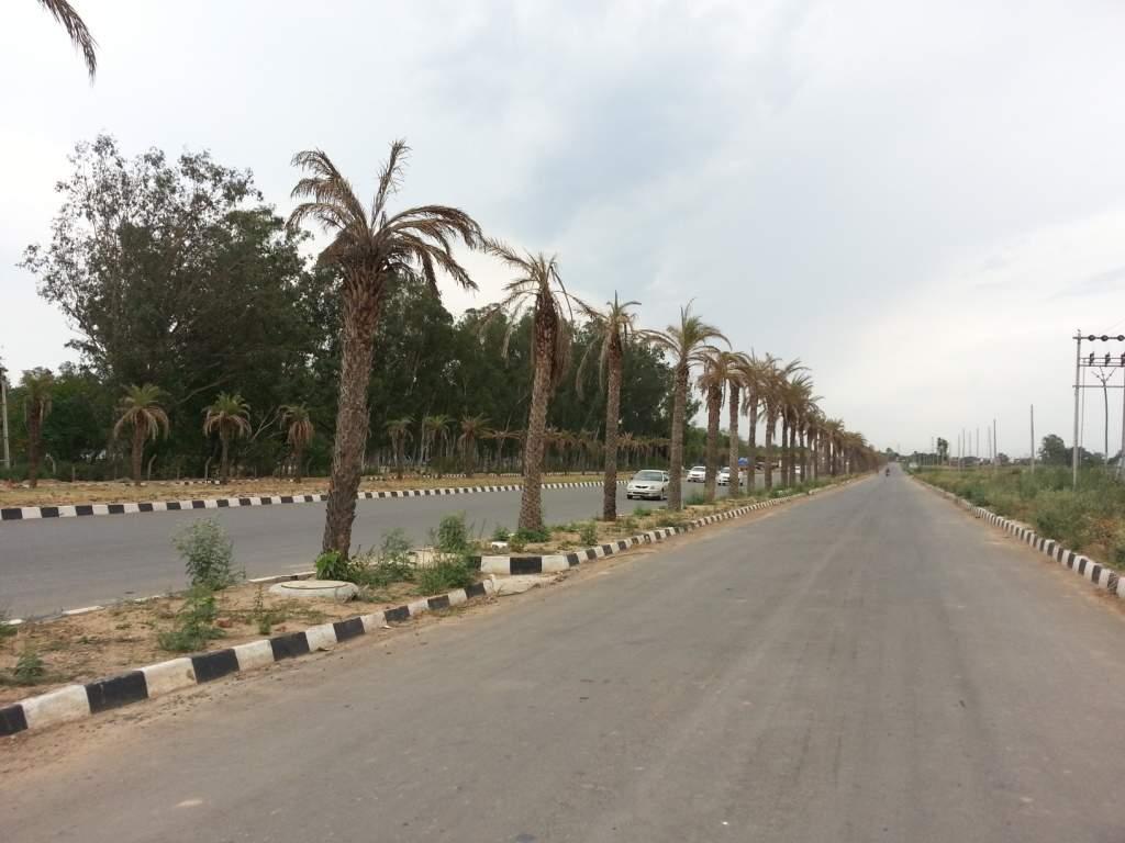 Eco City Internal Road