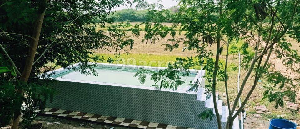 Green Leaf Farm Swimming Pool