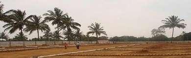 Ifi Realty Builders IFI Anand Niketan Sector-150 Noida