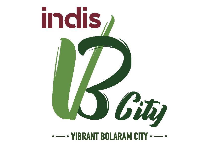 LOGO - Indis VB City
