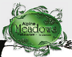 LOGO - Jains Alpine Meadows