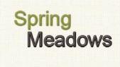 LOGO - Jains Spring Meadows