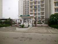 Jaypee Greens The Pavilion Court in Sector-128 Noida