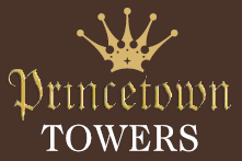 LOGO - Kumar Princetown Towers