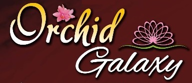 LOGO - Landmark Orchid Galaxy