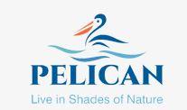 LOGO - Laukik Pelican