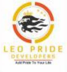 Leo Pride Developers