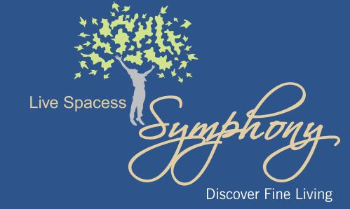 LOGO - Live Spacess Symphony