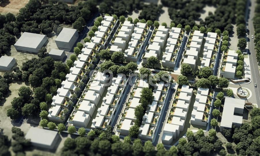 Living Walls Secret Soil Aerial View