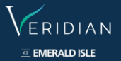 LOGO - L and T Veridian at Emerald Isle