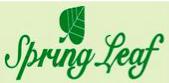 LOGO - Lokhandwala Spring Leaf