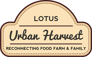 LOGO - Lotus Urban Harvest