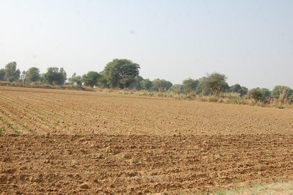 Madhav Bhumi Main View