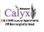 LOGO - Mahaveer Calyx