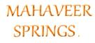 LOGO - Mahaveer Springs