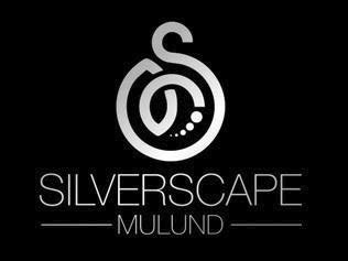 LOGO - Malde Silver Scape